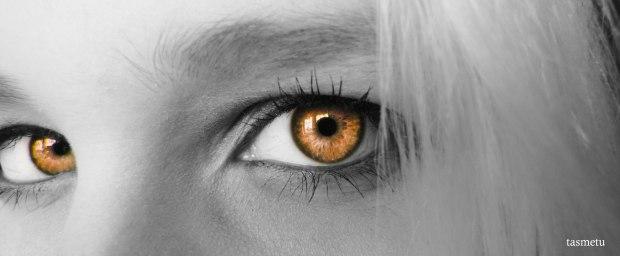 IMG_4423_orange
